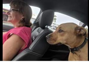 Jenny Hill and dog