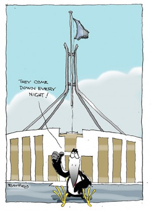 Parliamentary knickers small