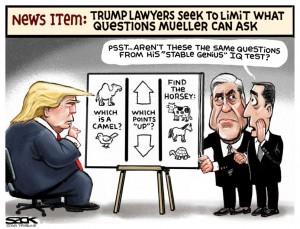 Trump mquestions