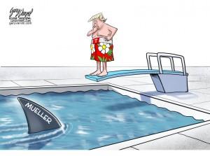 Trump pool