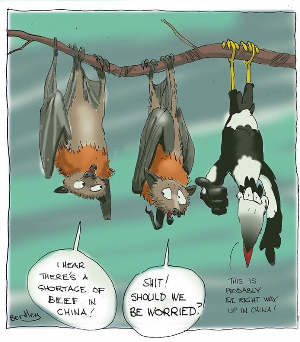 Bats flat small