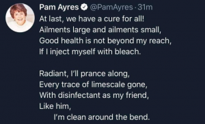 Pam AyresScreen Shot 2020-05-02 at 2.05.33 pm