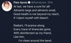 Pam AyresScreen Shot 2020-05-02 at 2.05.33 pm
