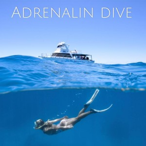 Adrenalin Dive13087714_10153541492620267_5789076859327344041_n
