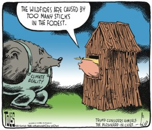 Tom Toles Editorial Cartoon - tt_c_c200920.tif