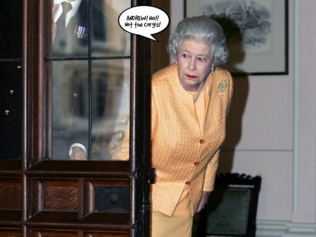 Queen corgis    ou7z4o